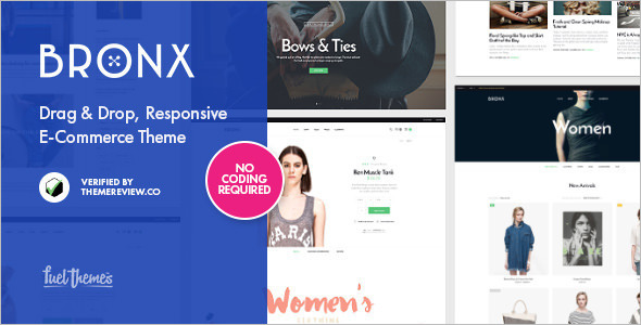 Responsive Functonal WordPress Template