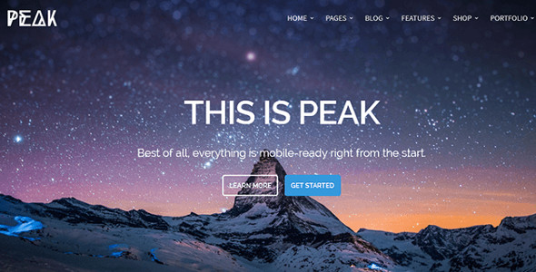 Retina WordPress Themes