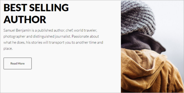 Selling Author WordPress Template