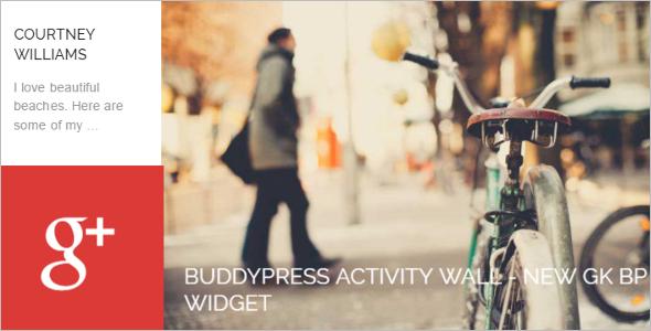 Socal Networking BuddyPress Website Theme