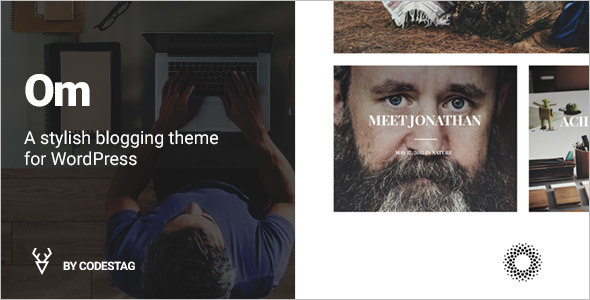 Stylish Blogging WordPress Template