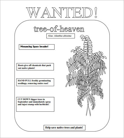 Tree of Heaven Most Wanted Poster Template –