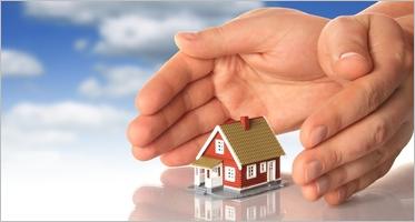 Insurance Website Themes
