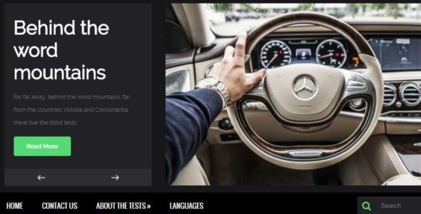 professional website theme