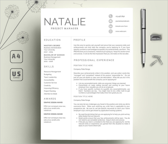 Creative Resume Model Template