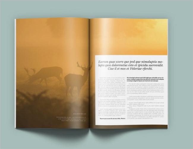 Creative Travel Brochure Design