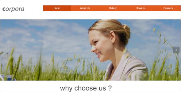 Customize HTML 5 Website Template