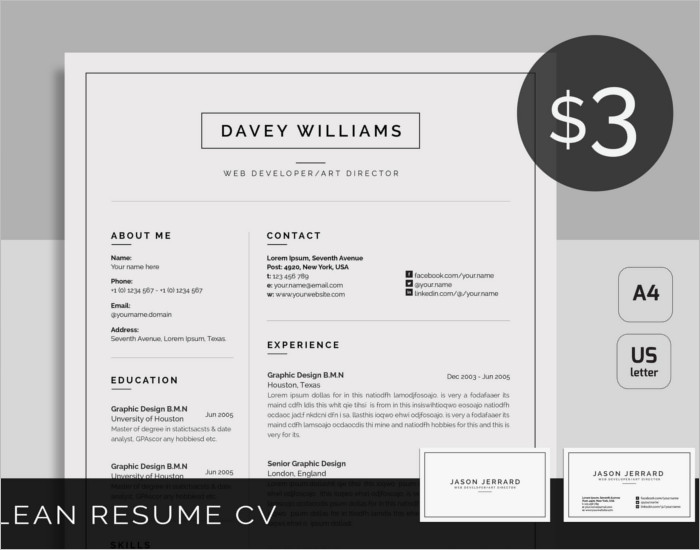 Customize Resume PSD Template