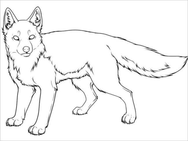 Dark Fox Template Design