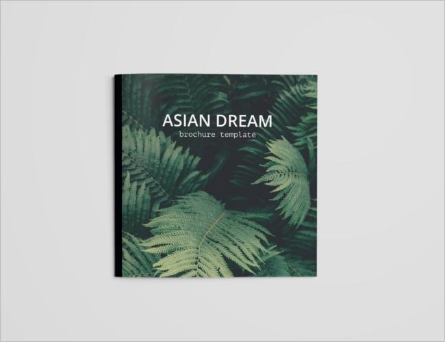 Dream Travel Brochure Design