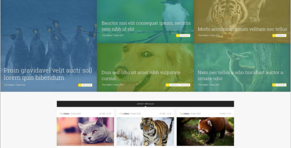 E-commerce Pet Magento Theme