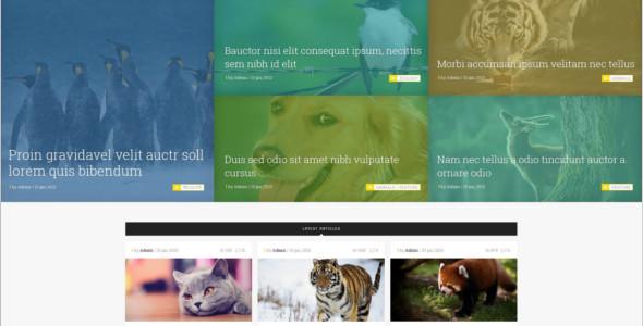 E-commerce Pet Magento Theme