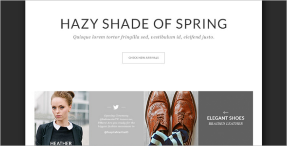 Elegant E-commerce PSD Template