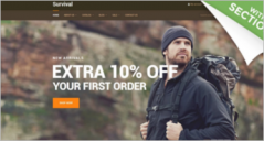 Shopify Blog Themes