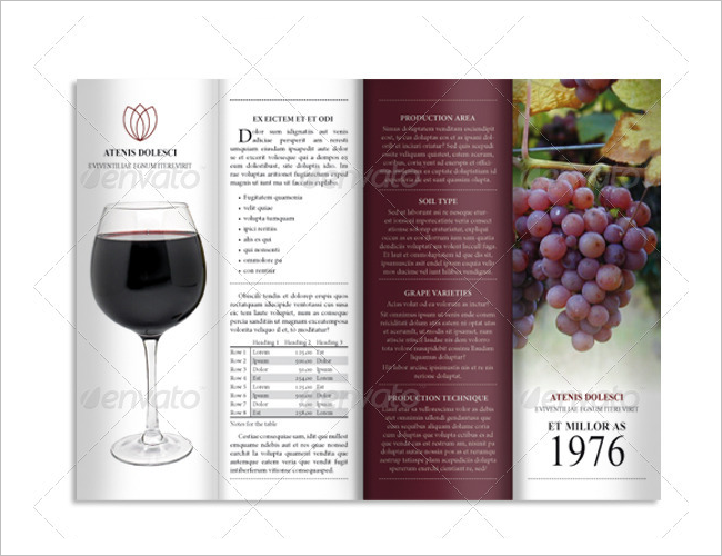 Fold Accordion Wine Brochure