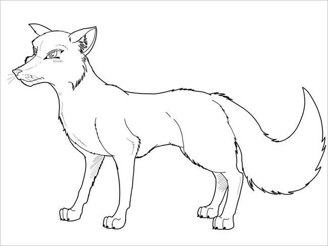 Fox Design Template