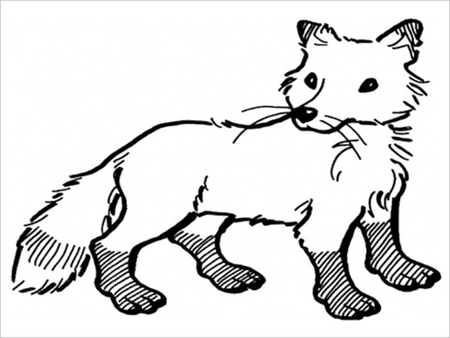 Fox Dot to Dot Template