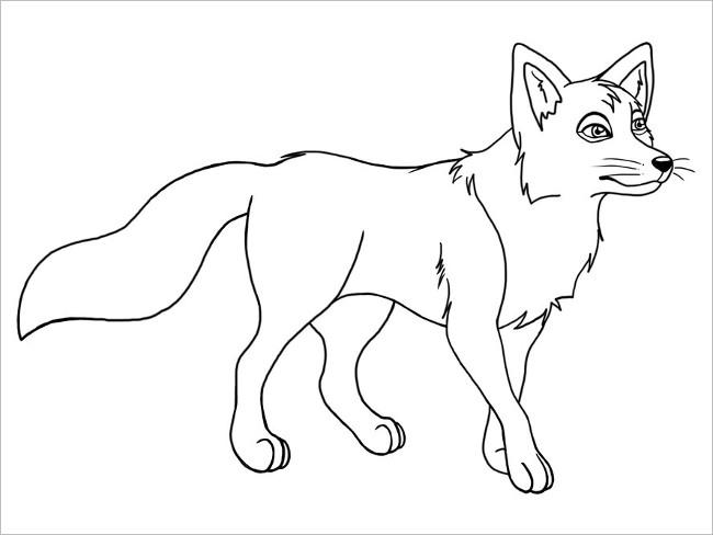 Fox Image Design