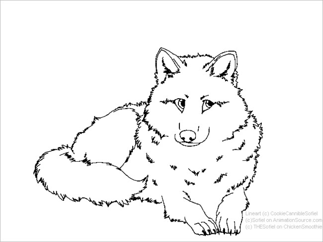 Fox Template Custom Template