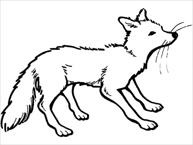 Fox Template in Forest Design