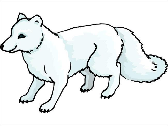 Funny Fox Design Template