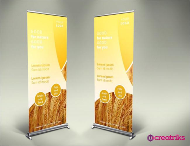 Global Meeting Flyer Designs