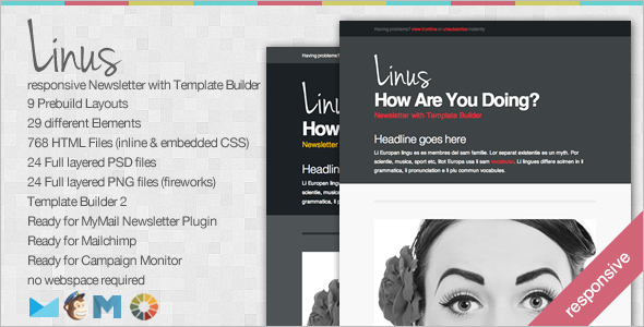 Linus Newsletter Website Template
