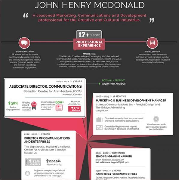 Premium Infographic Resume Template
