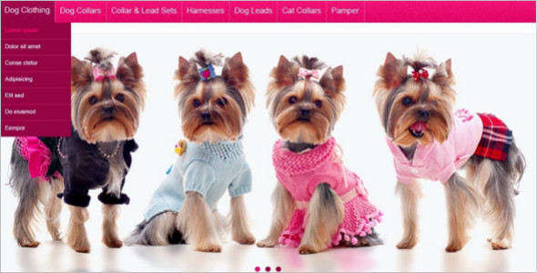 Pretty Animal Pet Shop Magento Theme