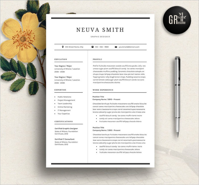 Resume Design Model Template