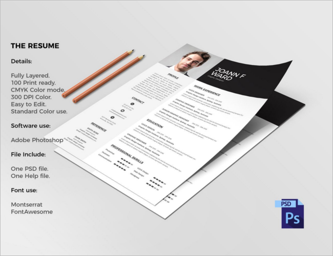 Resume Layout Model Template