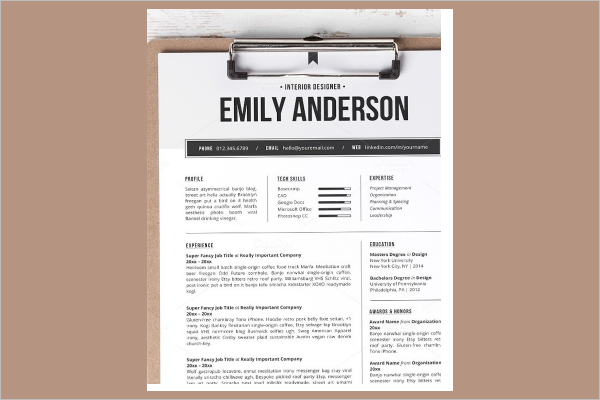 Resume MAC Excel Template