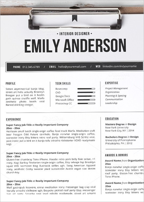 Sample Professional Resume Template