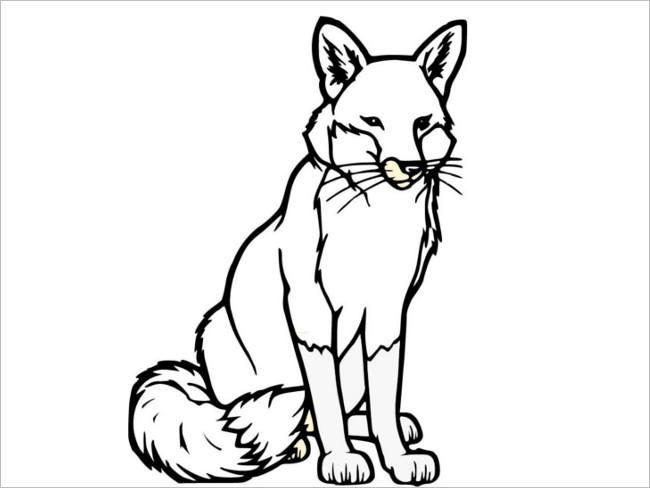 Selective Fox Design Template