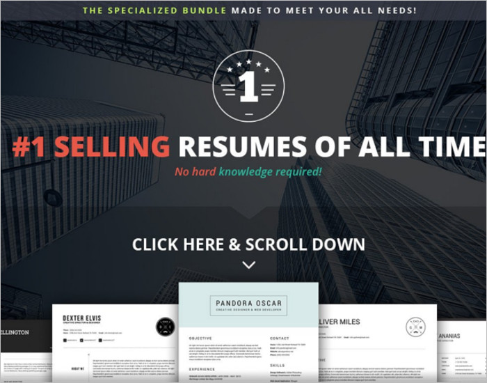 Sellers Resume PSD Template
