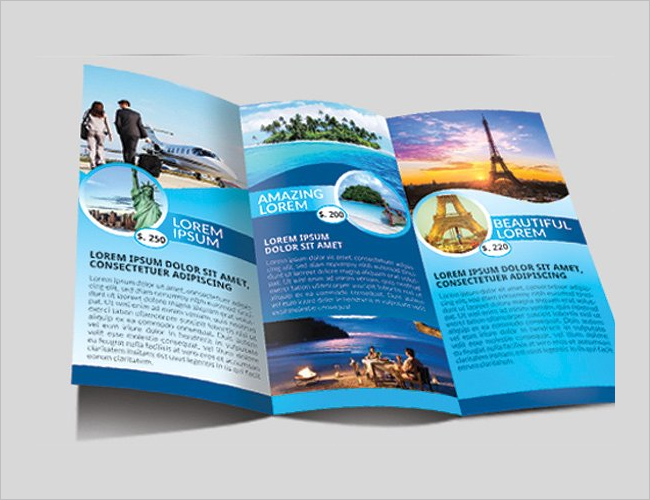 Trifold Interior Brochure Decoration