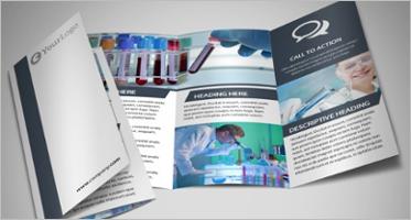 Brochure Examples Pdf