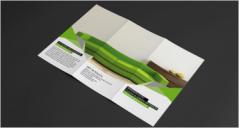 25+ Interior Design Brochure PDF Templates