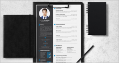23+ Free Resume Example Templates