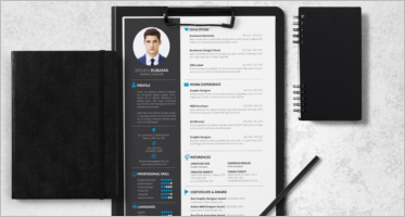Free Resume Example Templates