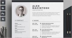 20+ Free Infographic Resume Templates