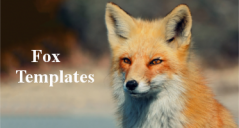 40+ Free Printable Fox Templates
