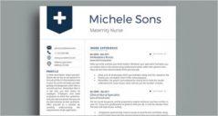 16+ Nurse Resume Templates Free Word, PDF Documents