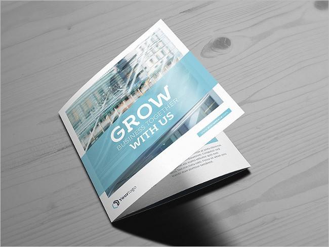 Main Square Trifold Brochure