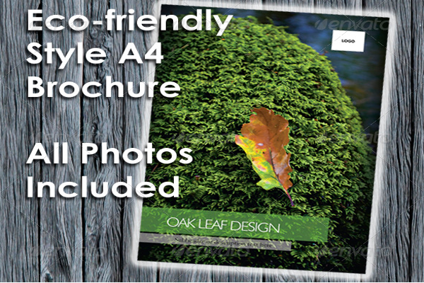 Autumn Leaves Brochure Design