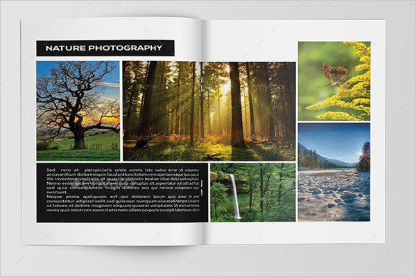 Beautiful Nature Photography Brochure