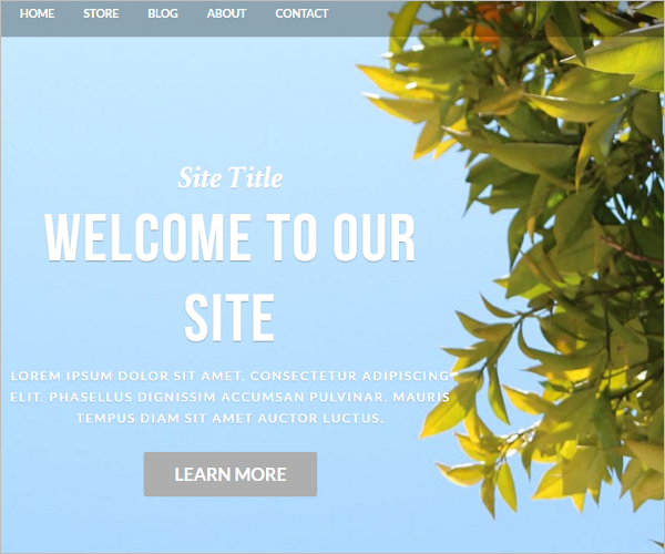 Blog Weebly Template