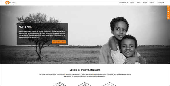 Clean Fundraising WordPress Theme