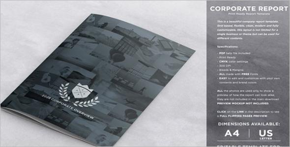 Corporate Brochure Infographic Design Template