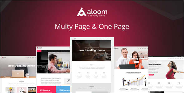 Corporate Software Drupal template